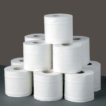 The Tale of the Two-Ply Toilet Paper Caper - Steve Harvey